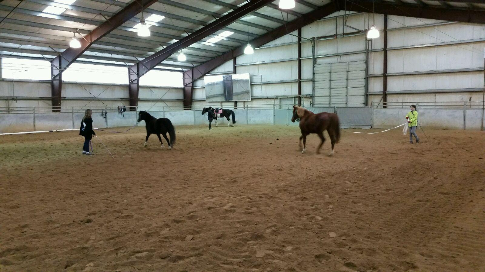 Lunging-Clinic-2.jpg