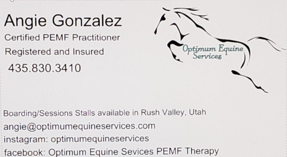 Optimum Equine Services