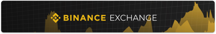 BINANCE+AD+on+ROGUENEWS_june11th_png.png