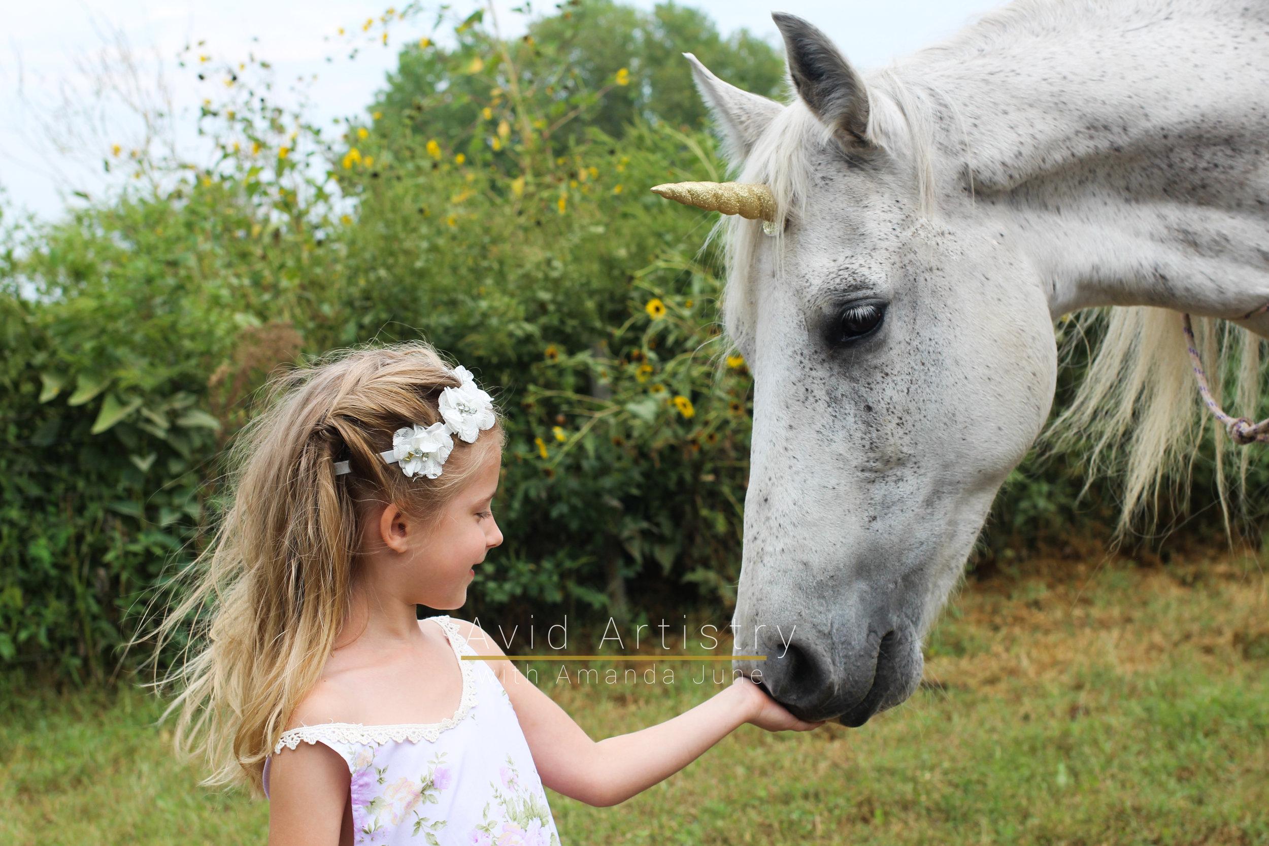 unicornfunlogo-6.jpg