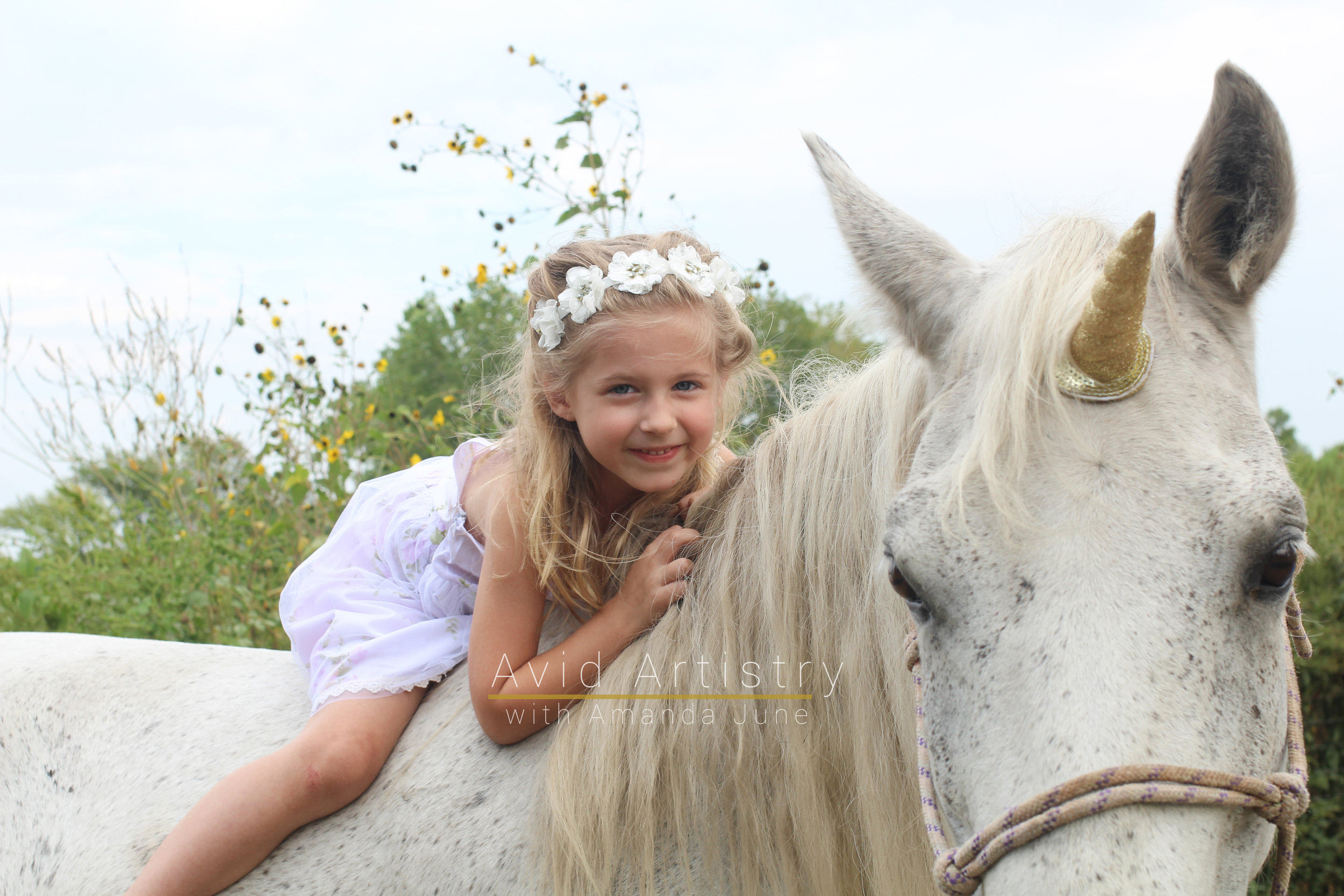 unicornfunlogo-15.jpg