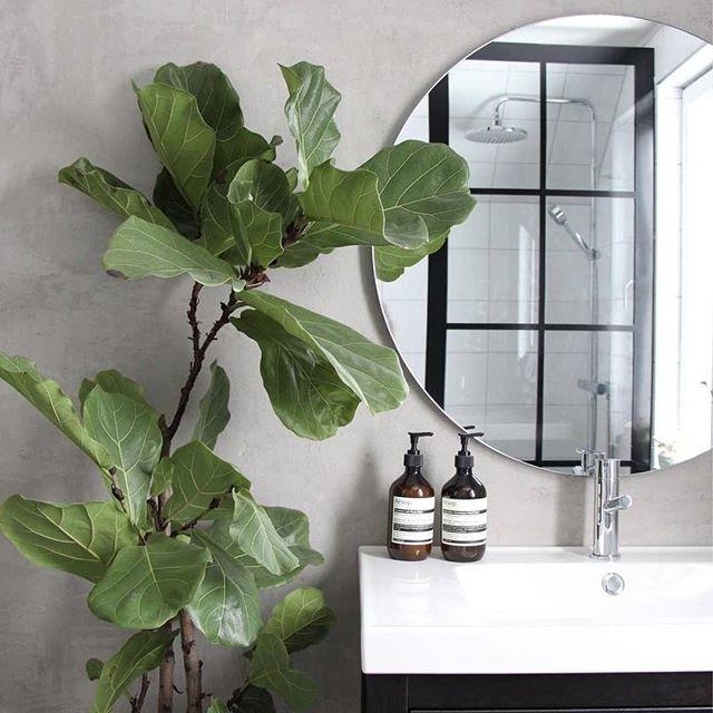 Vi blir superglada när vi får se hur fint det blir hemma hos våra kunder! 😀 Industriväggen passar perfekt in i det här stilrena badrummet inrett av @josefinegunhamre 👍👍 . . . #hemmahoskund #dream_interiors #industriglasvägg #industridesign #glasvägg #spröjsadefönster #badrumsinspo #badrumsrenovering #duschvägg #microcement #interior #scandinaviandesign #industrivägg #inredning