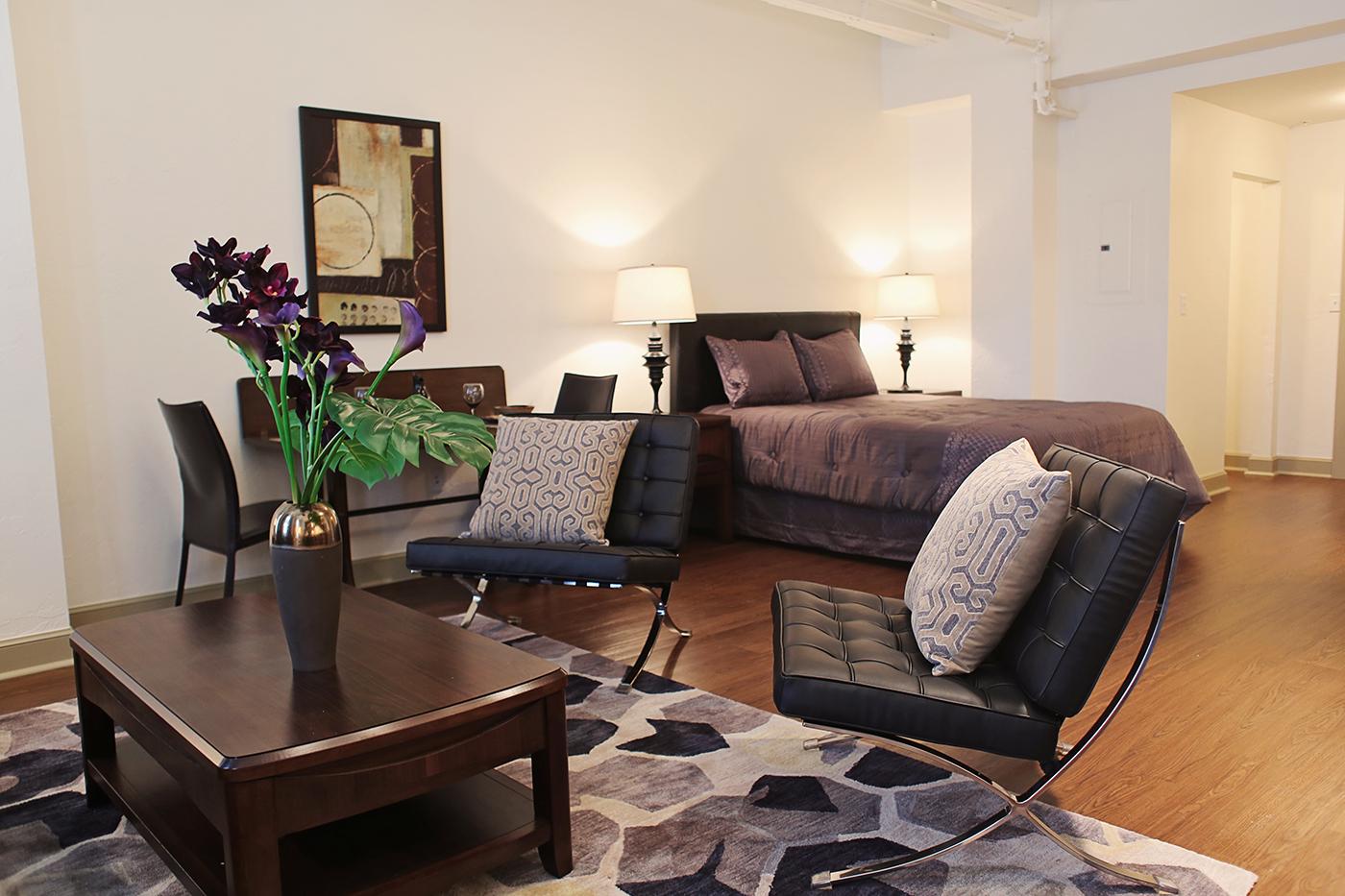 Douglass Studio Living Room Bedroom.jpg