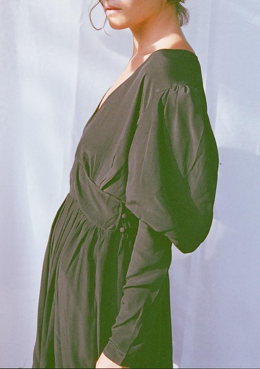 silk puff sleeve dress 1.png