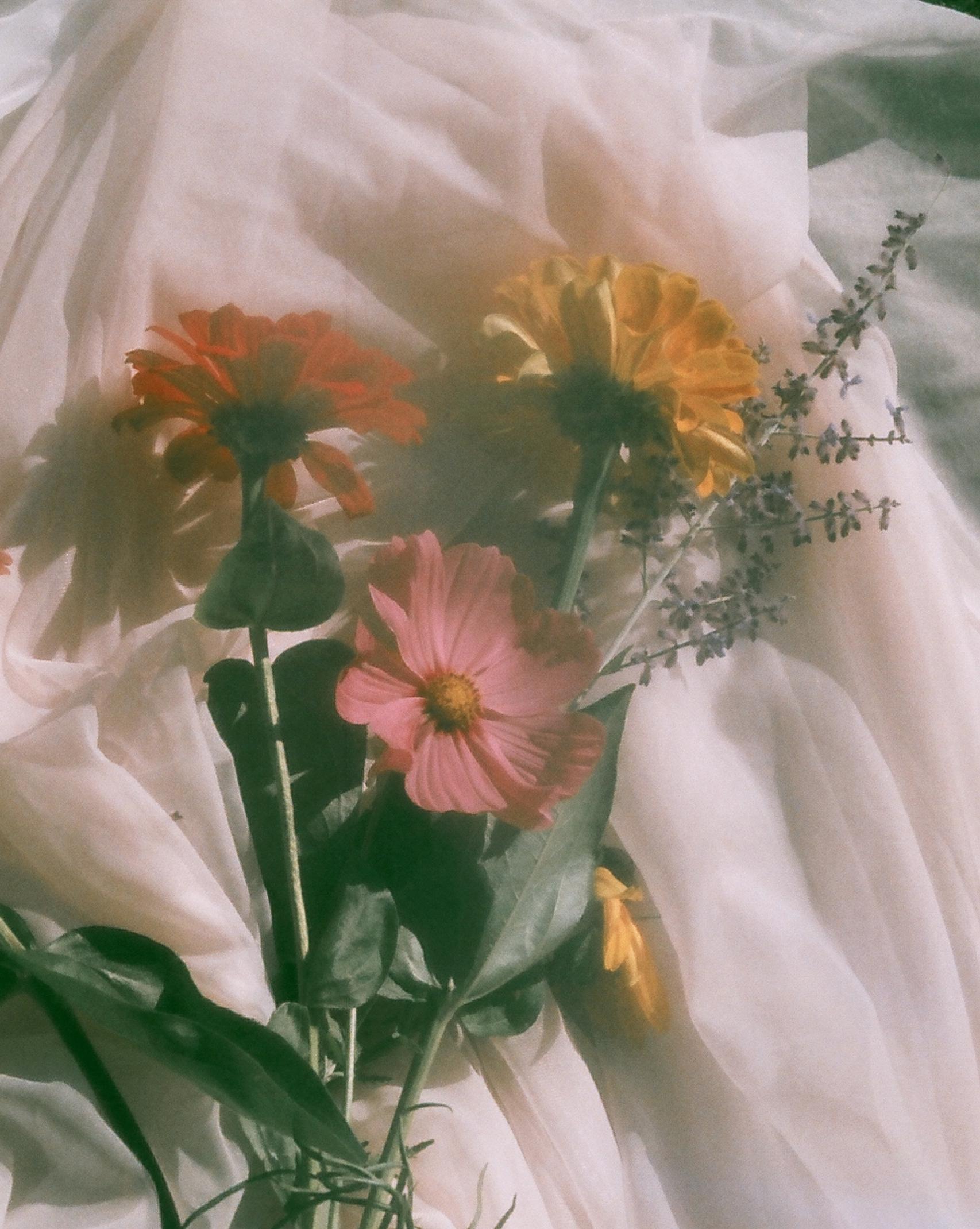flowers 02049.jpg