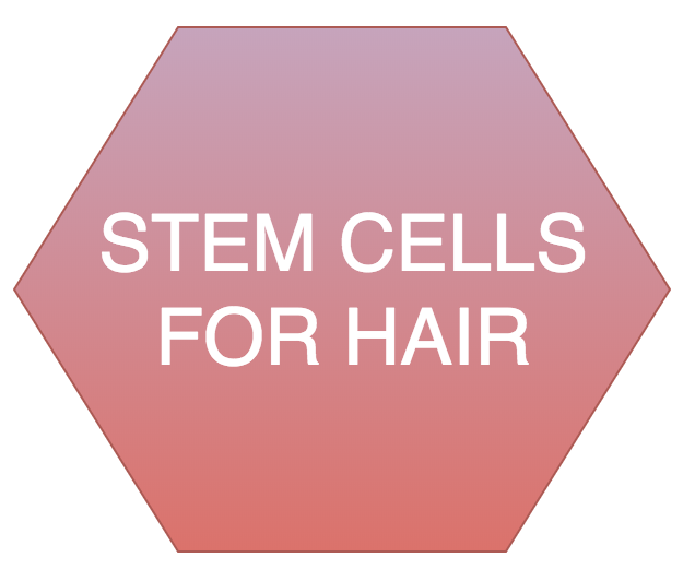 Stem Cells for Hair at docere clinics park city
