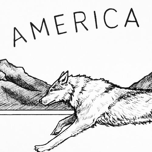 AMERICA Y'ALL   SHIRT DESIGN