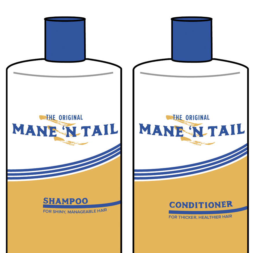 MANE 'N TAIL   REBRAND PROJECT