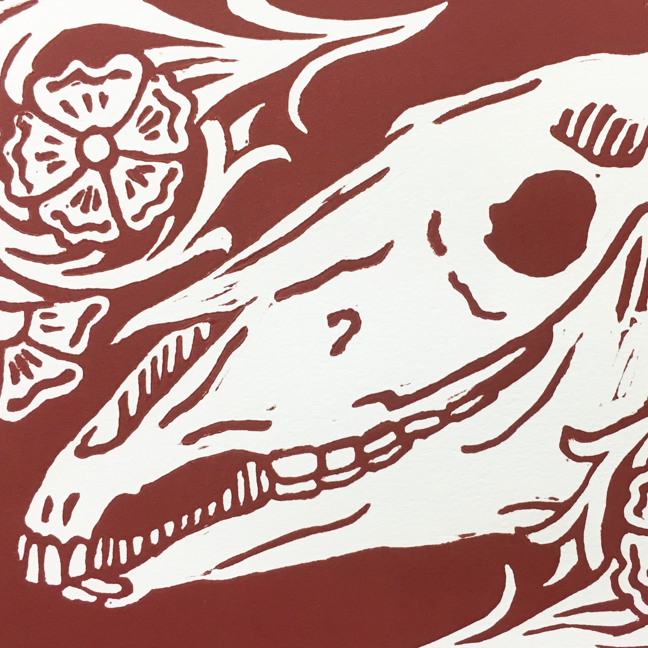 SKULL AND ROSES   PRINTS AVAILABLE