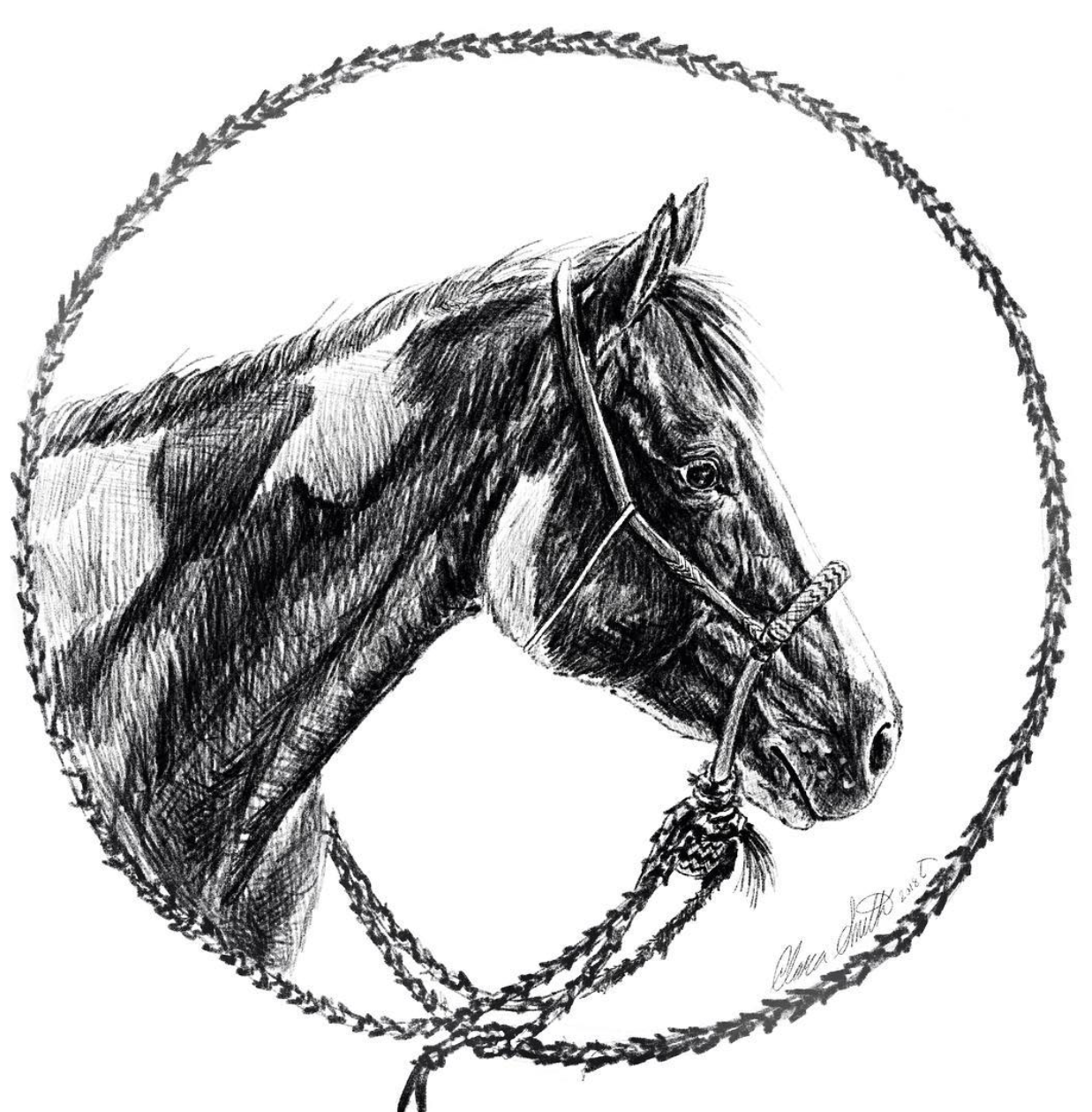 BOSAL MARE   PRINTS AVAILABLE