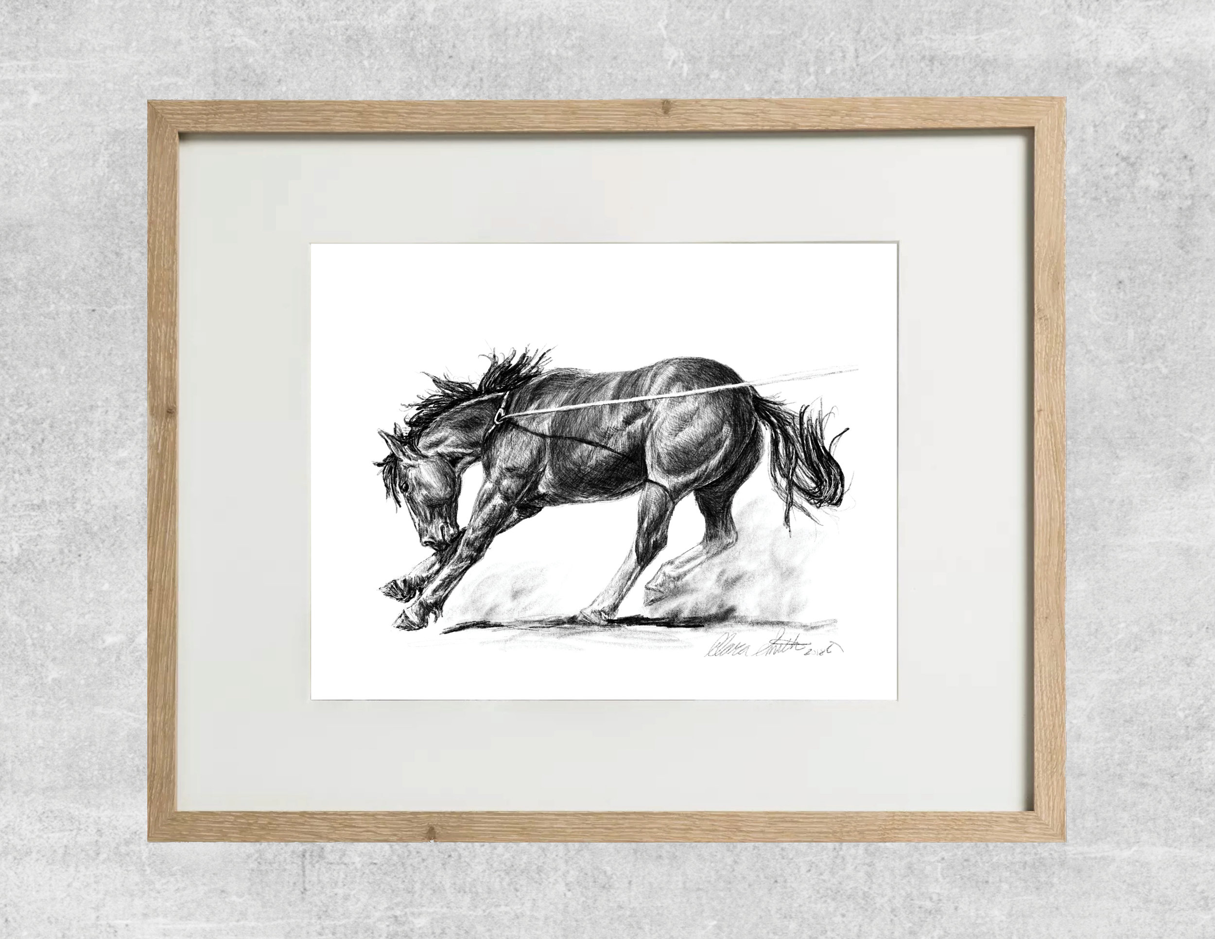 roughstock colt framed.jpg