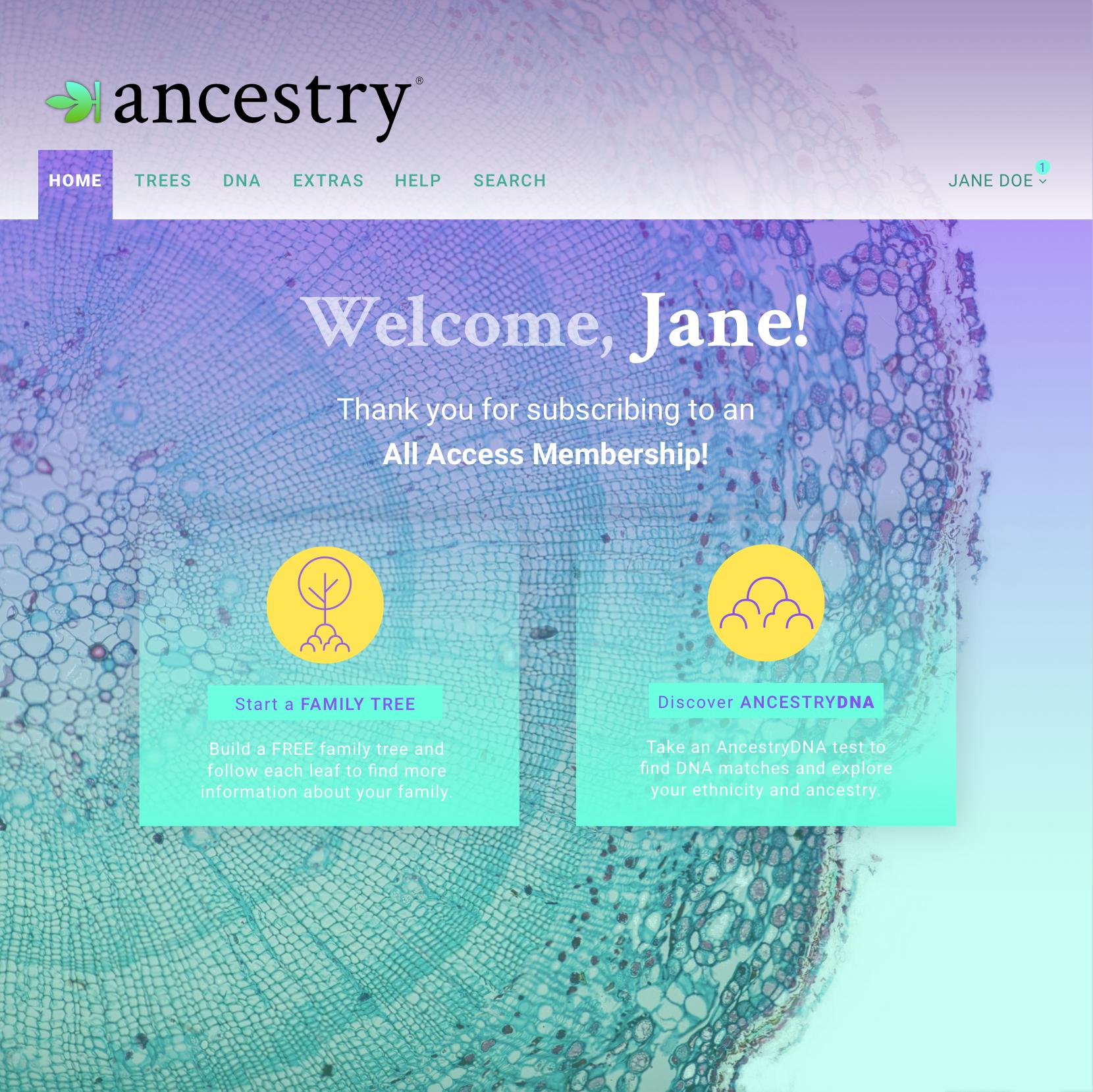 ANCESTRY.COM REDESIGN