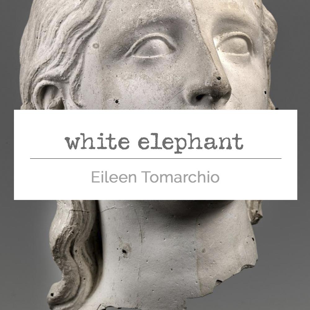 white elephant tile.jpg