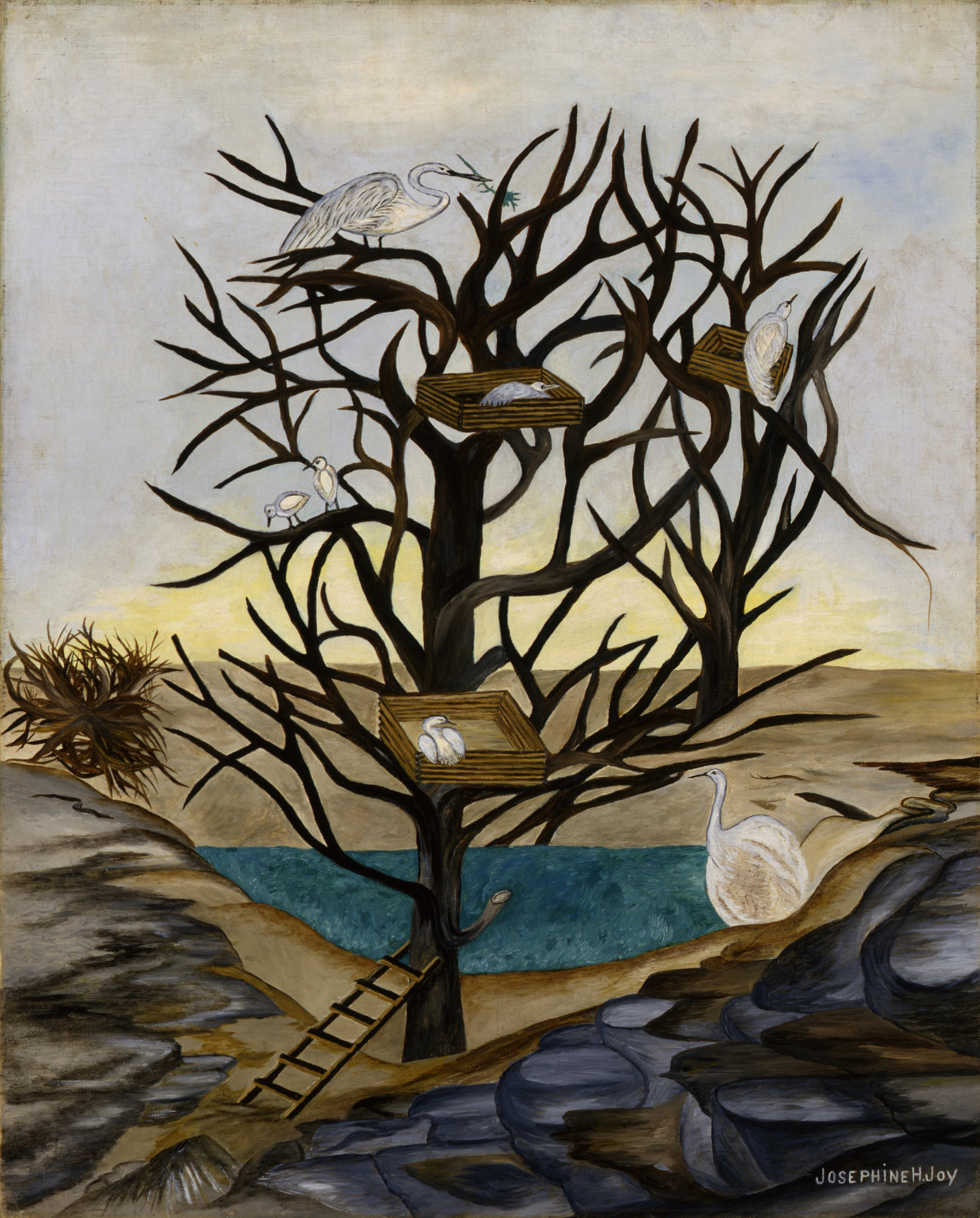 Josephine Joy, Waterbirds Nesting, ca. 1935-1939, oil on canvas, Smithsonian American Art Museum, Transfer from General Services Administration, 1971.447.42
