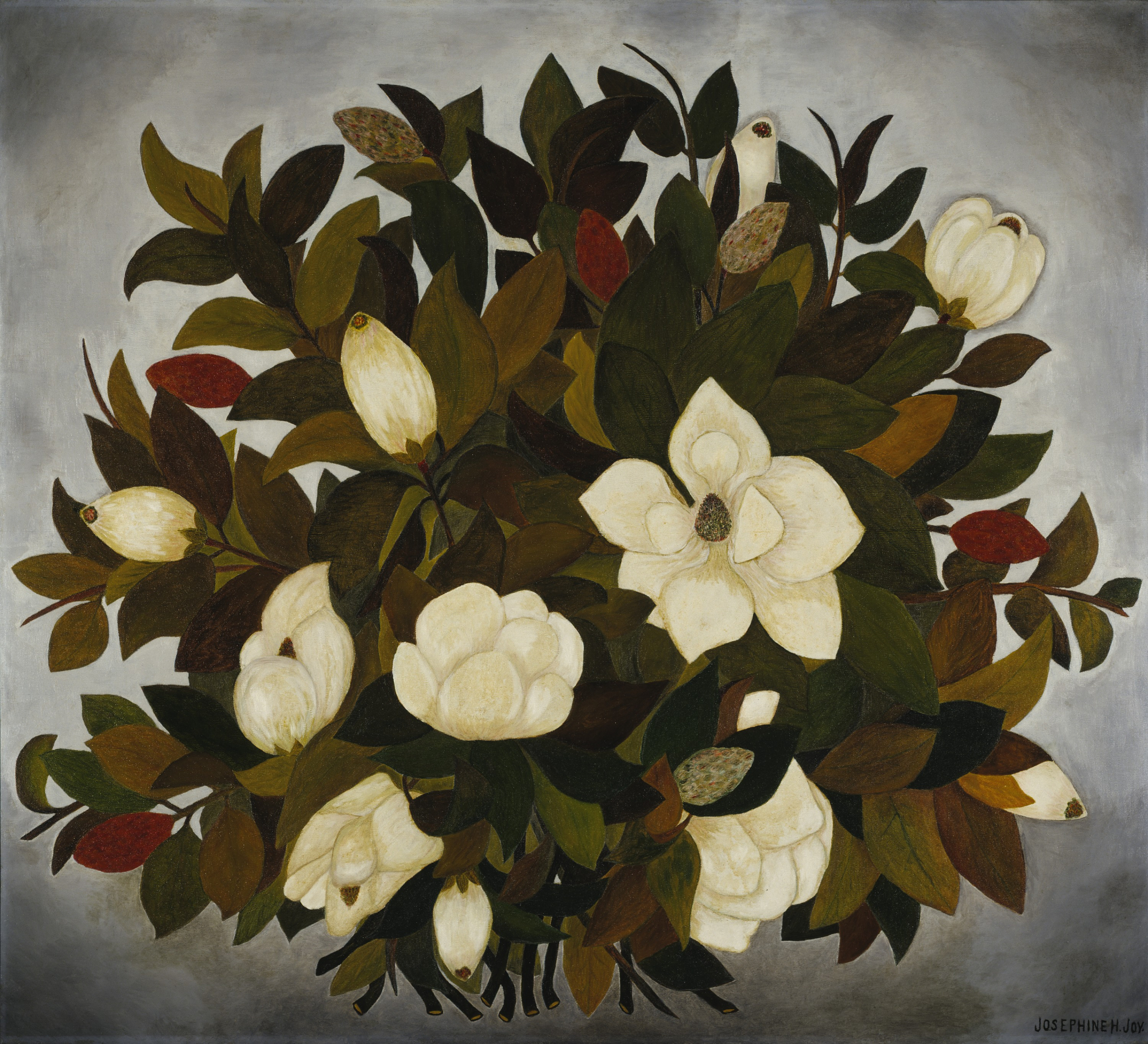 Josephine Joy, Magnolia Blossoms, ca. 1935-1941, oil on canvas, Smithsonian American Art Museum, Transfer from General Services Administration, 1971.447.44