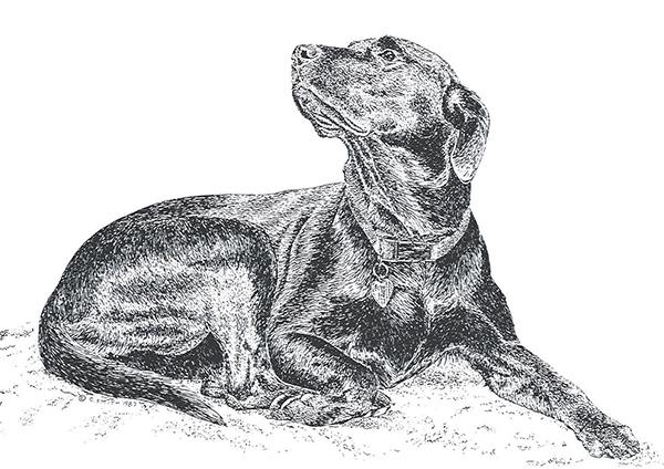 """Georgia"" Mosher -  The Best Dog Ever, 1985-1998"