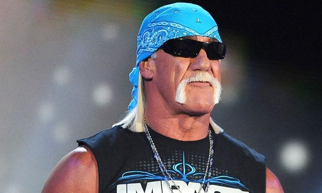 Hulk Hogan — Famous Punks