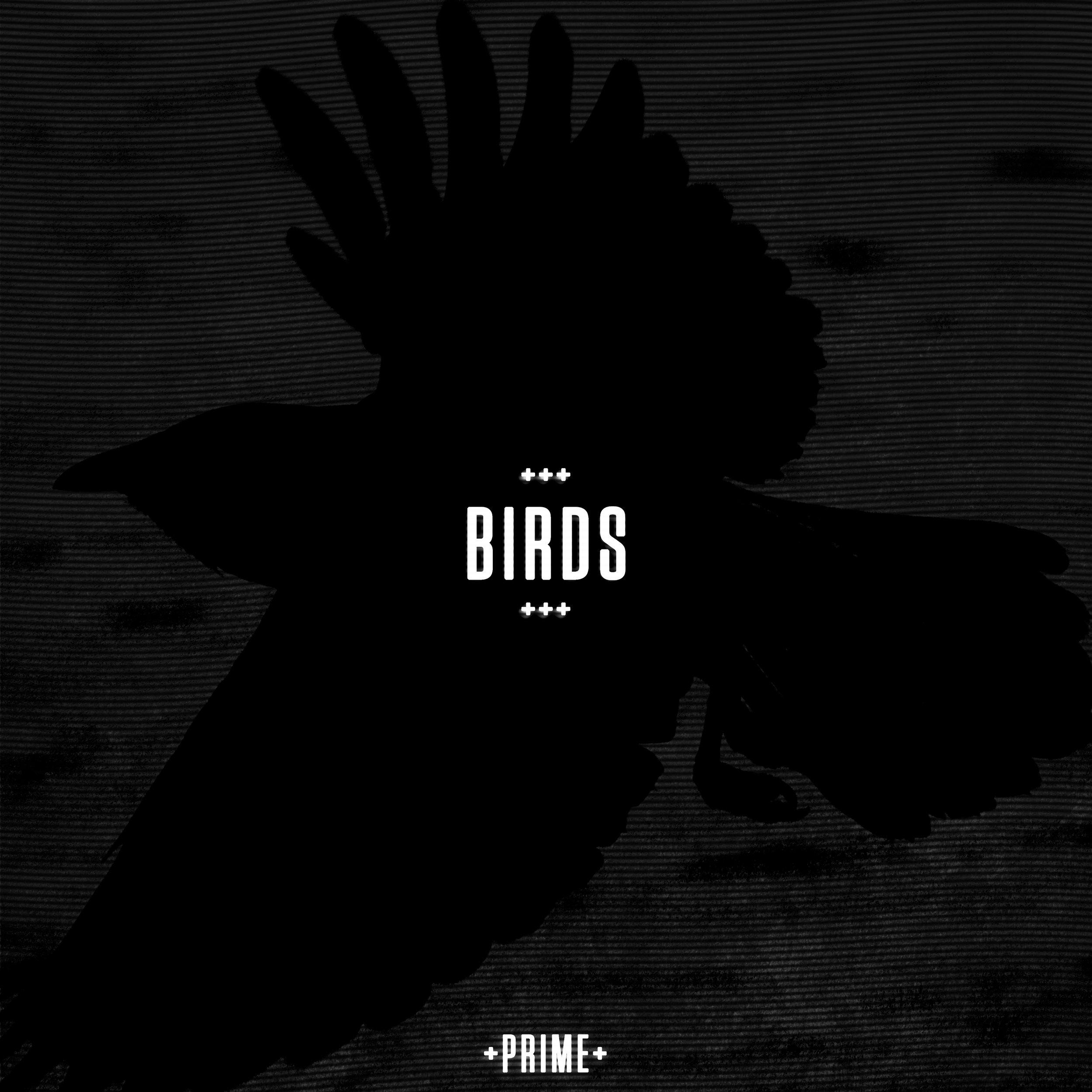 slow-graffiti-birds-artwork.jpg