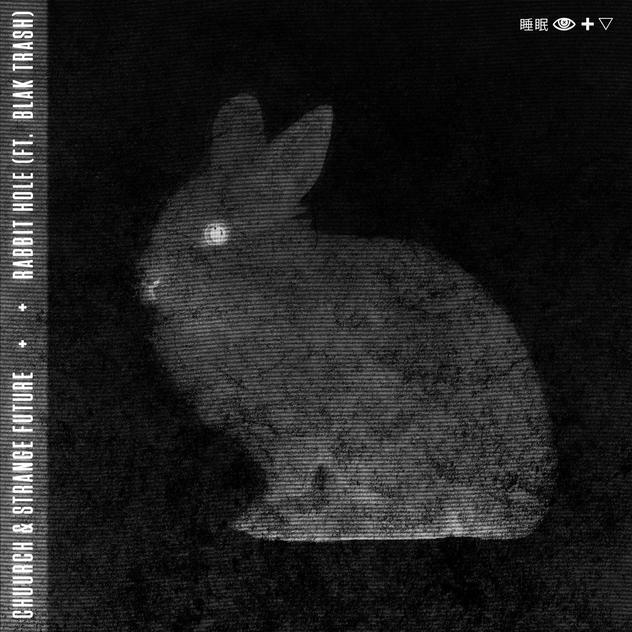 rabbit-hole-artwork.jpg