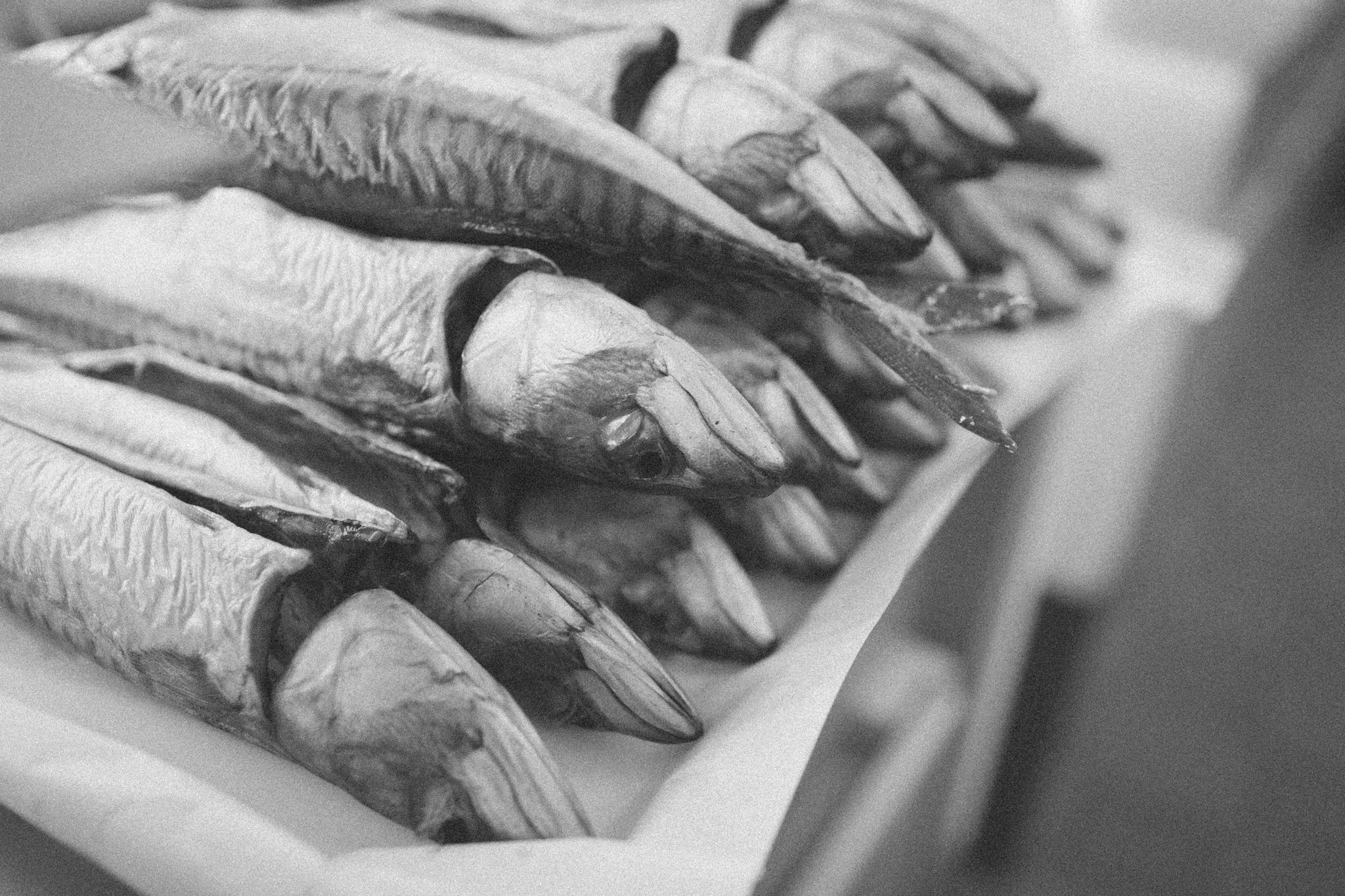 Springs Salmon - a traditional family run smoked salmon business in Sussex photographed by Emma Gutteridge for Retreat blog