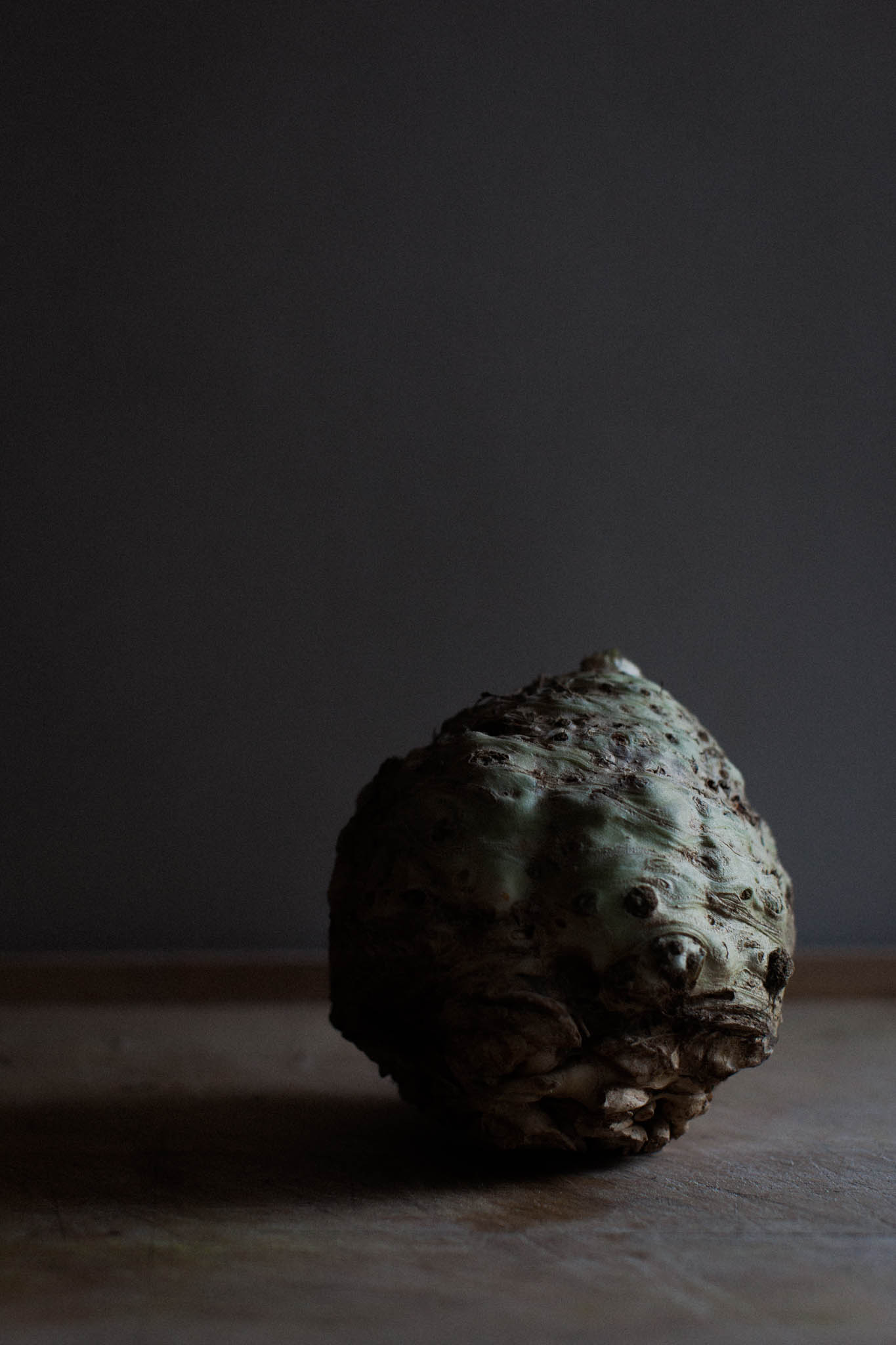 celeriac_low-2.jpg