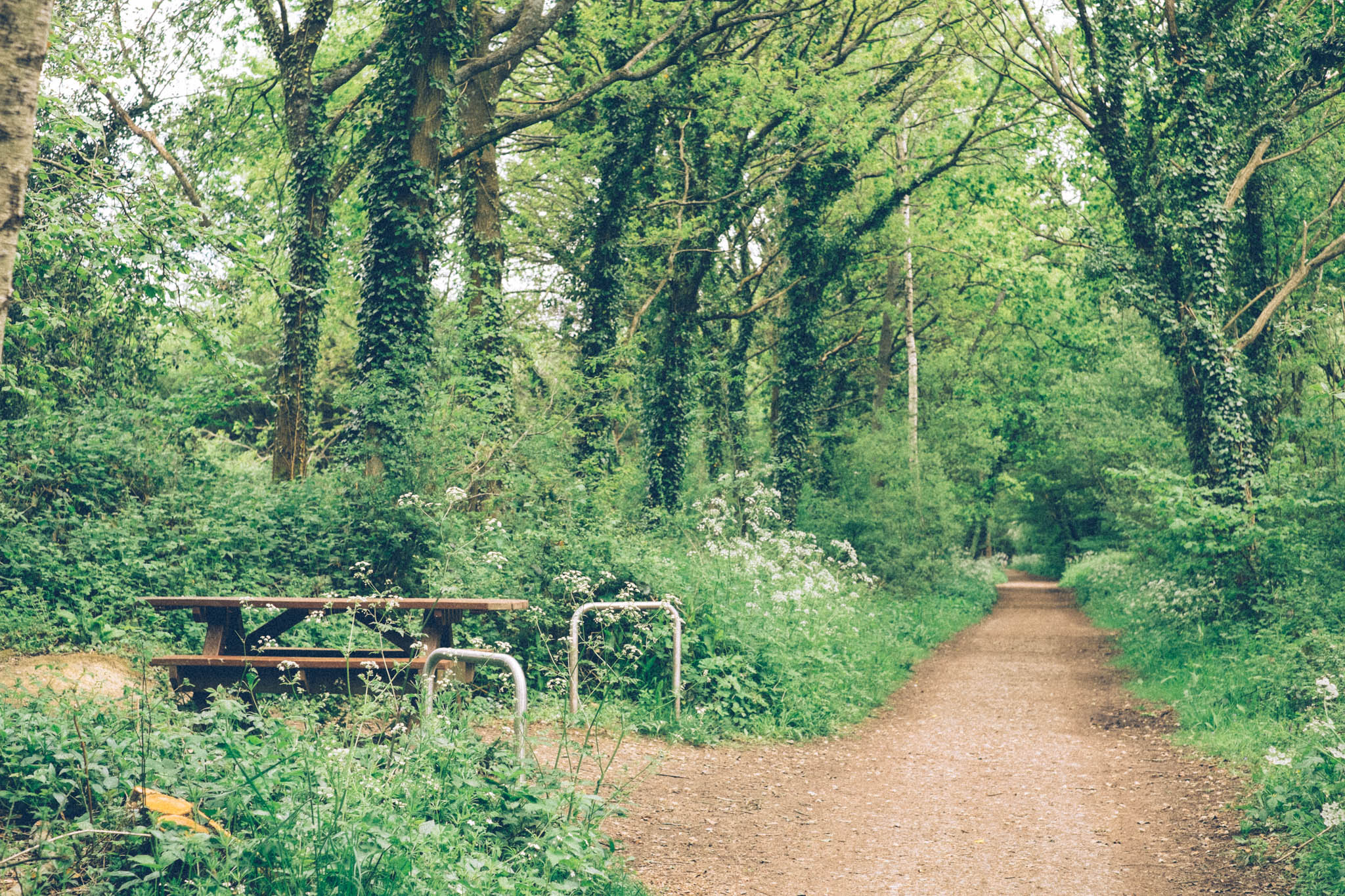 Forest Way off road bike ride. Photography by Emma Gutteridge for Retreat blog.
