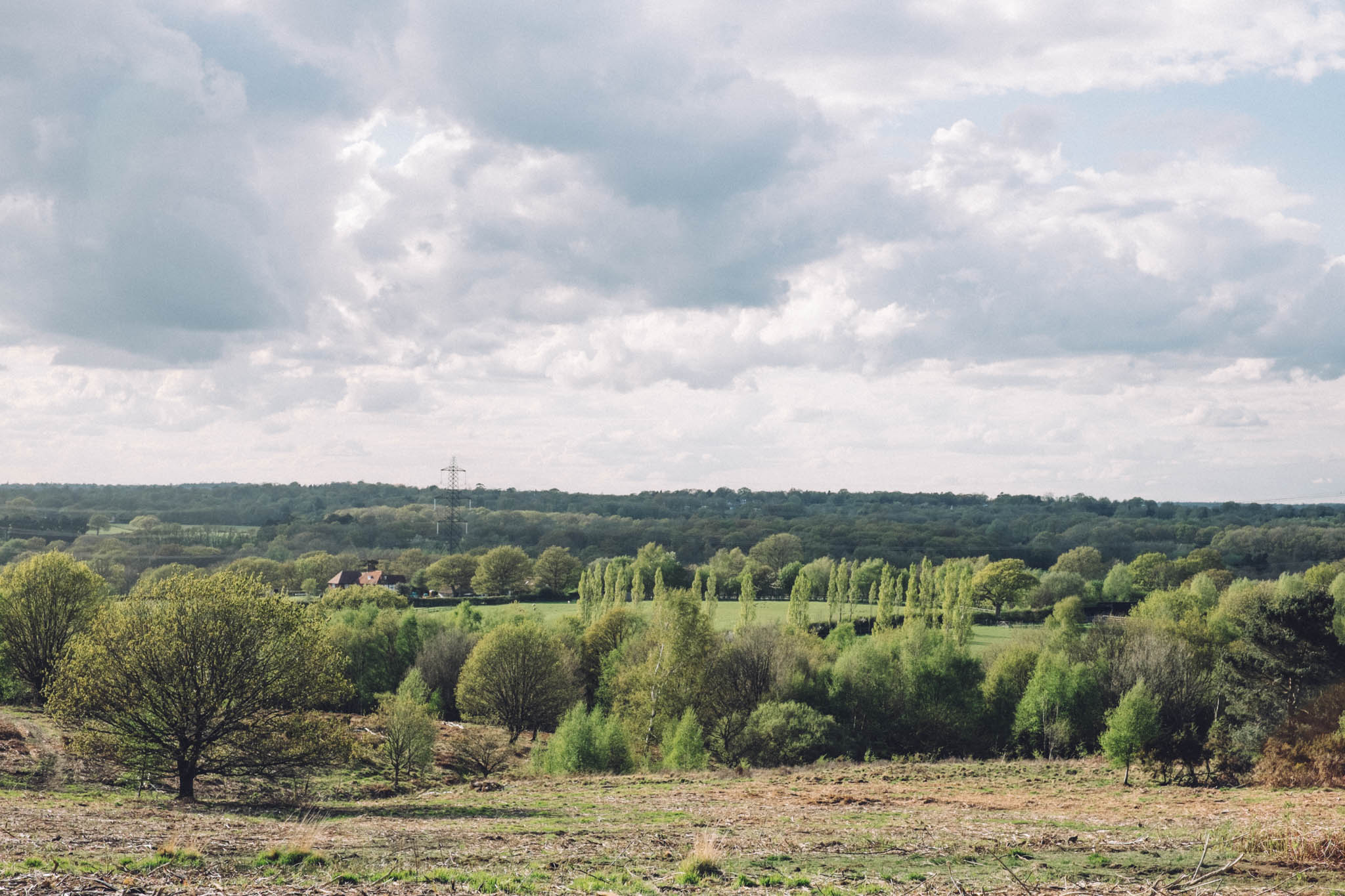 Red House Common is stunning open lowland heathland in North Chailey, East Sussex. Sussex walks on Retreat - a food and lifestyle blog.