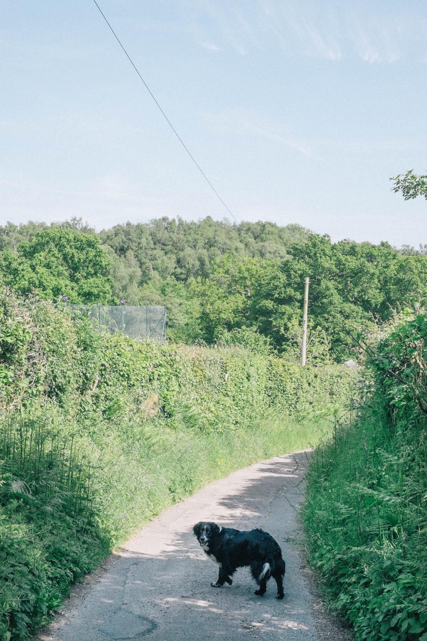 Photography by Emma Gutteridge for Retreat blog.