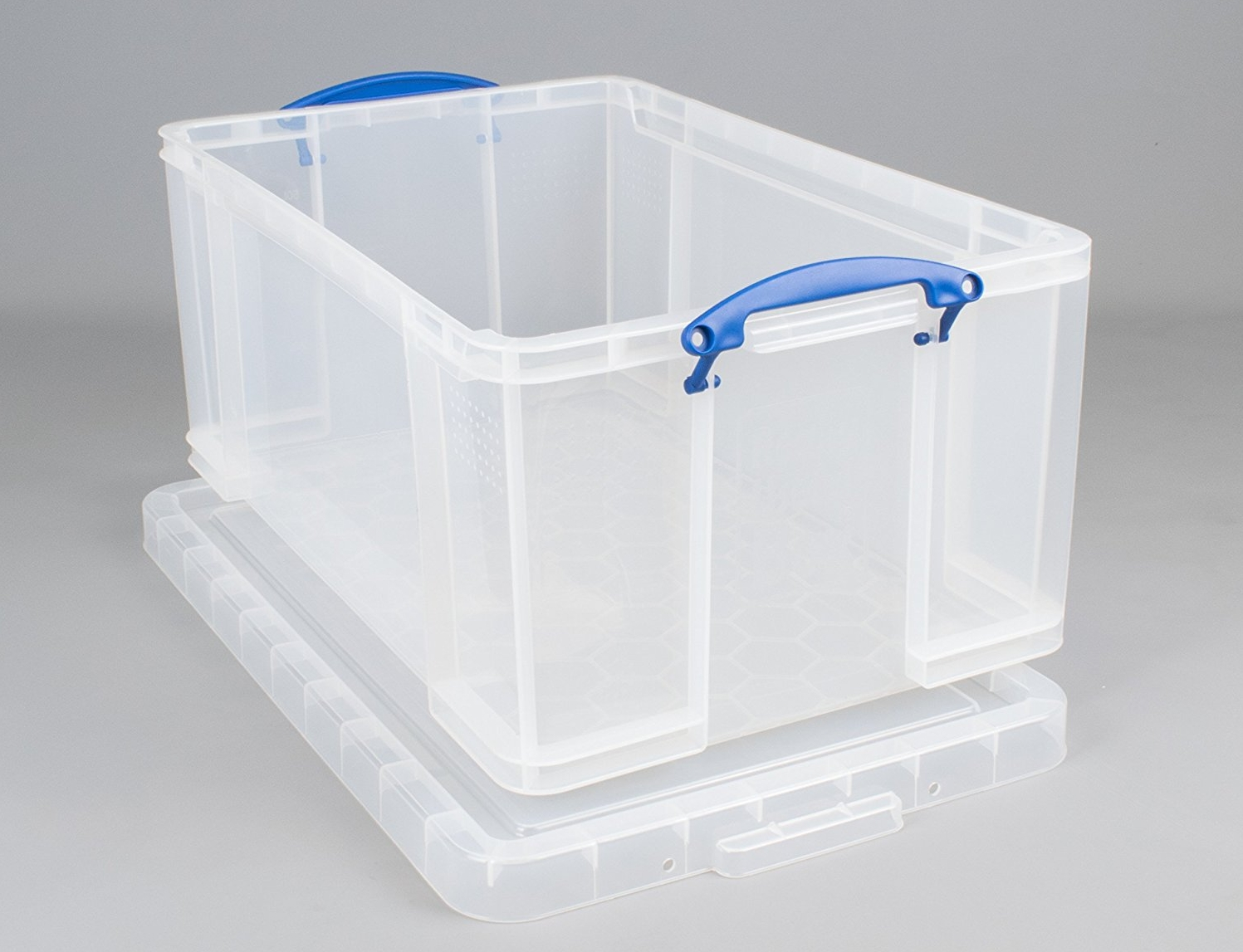 A plastic storage box, suitable for keeping most sizes of snail.