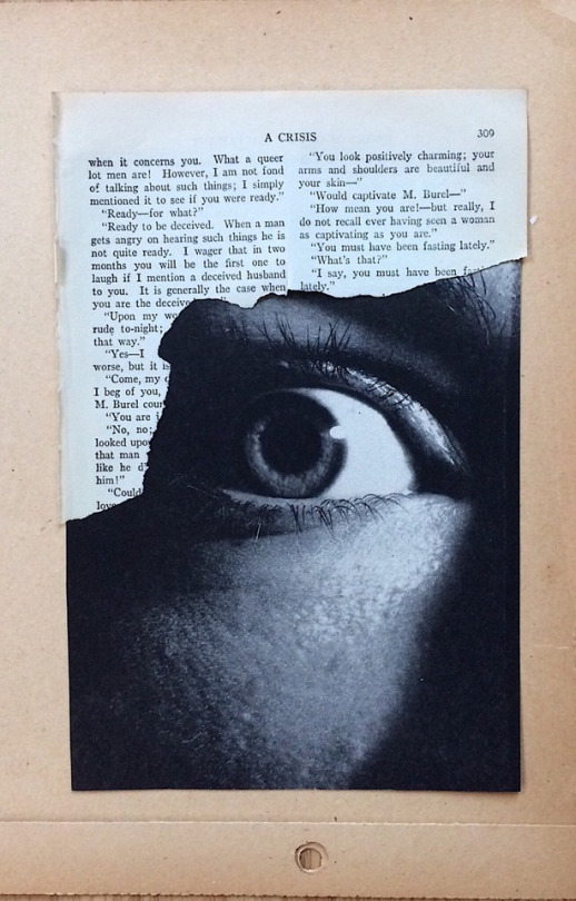 Spinnerweb/ Susan Ringler   Eye spy with my naked eye