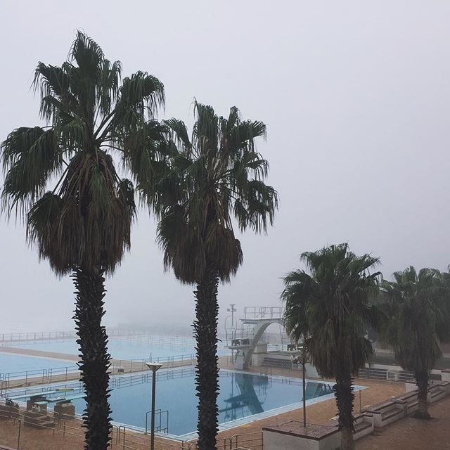 Couldn't ask for better! Early morning mist over an empty pavilion pool. This was my students' inspiration on their  digital photography workshop excursion for @ormsctsp. Thank you all for a fab 6 weeks. . . #teachingphotography #ormsctsp #seapointpromenade #morningmist #earlymorningswim #pavillions