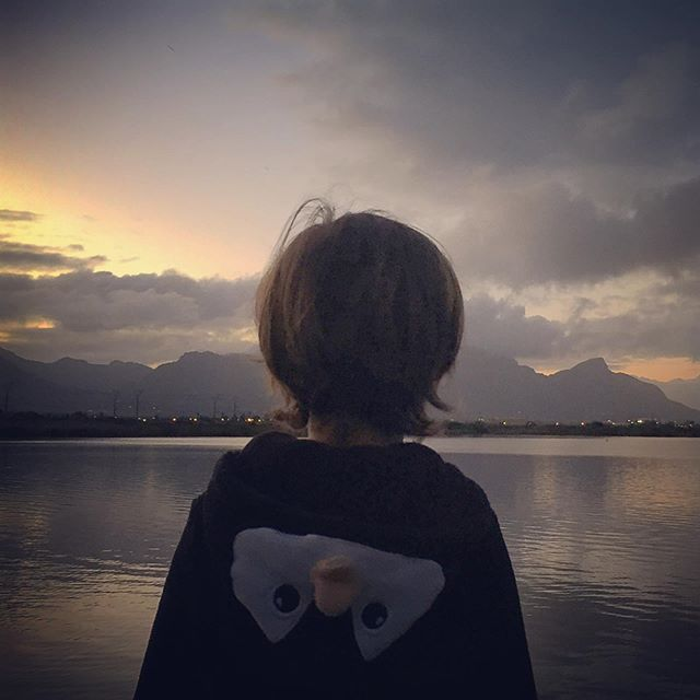 After a day of shooting, I get to come home to this- a penguin and a view. #homeiswheretheheartis #motherfirst #eveningwalk #muizenberg #zandvlei