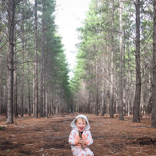 Happiness is a glittery bunny in a park on a winters day #blisteryday #capetownwinter #forestfun #tokaiforest #familywalks