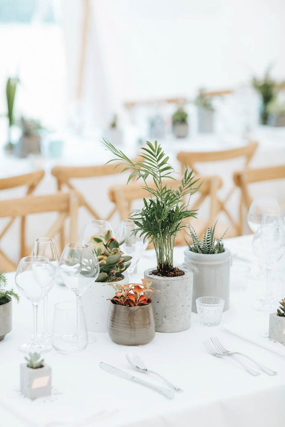 image via  June Bug Weddings