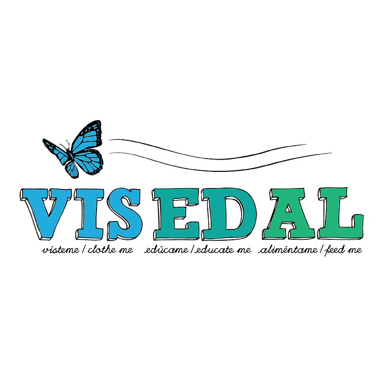 VISEDAL Partnership