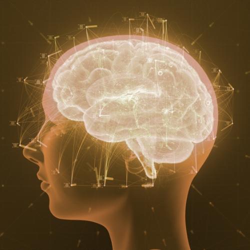 NEUROSCIENCE & PSYCHOLOGY -