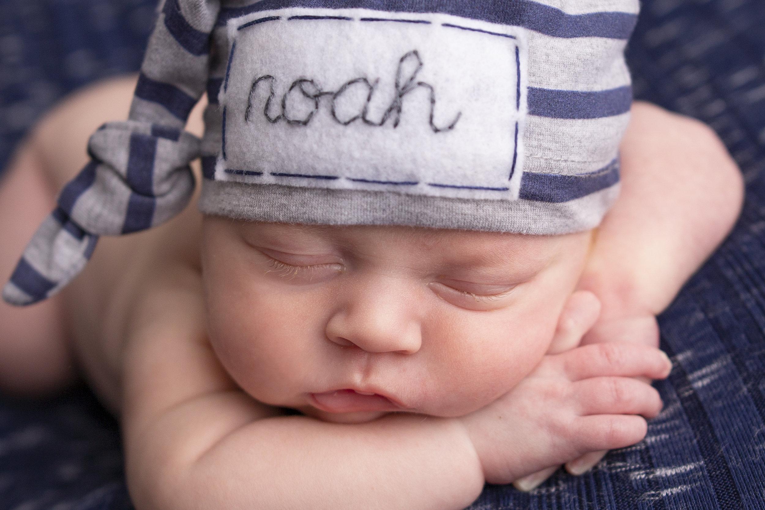 Noah1.jpg