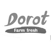Dorot_copy.jpg