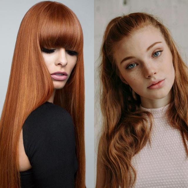 Ginger 1.PNG