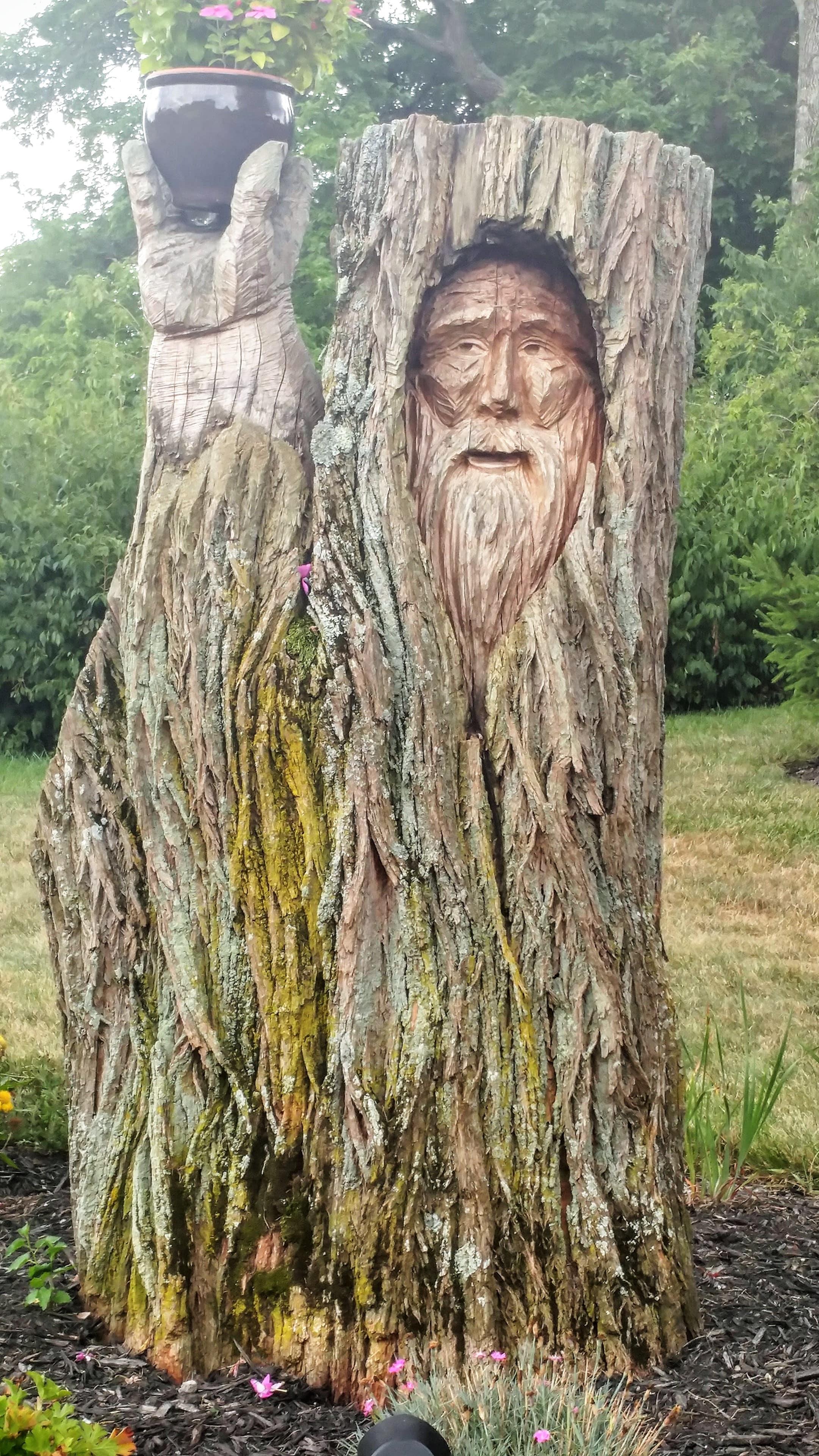 treeface1-min.jpg