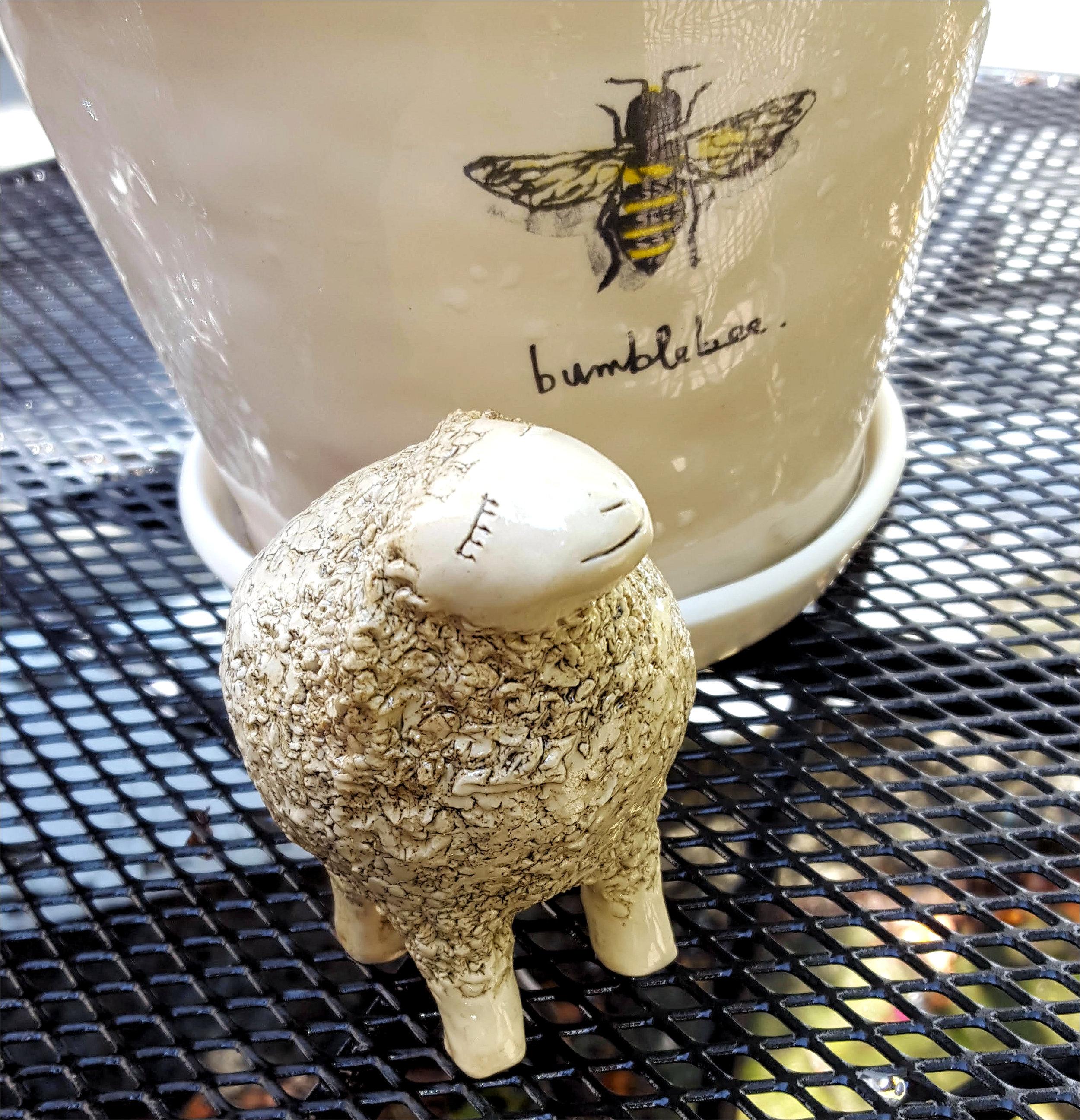 sheep on table outside.jpg