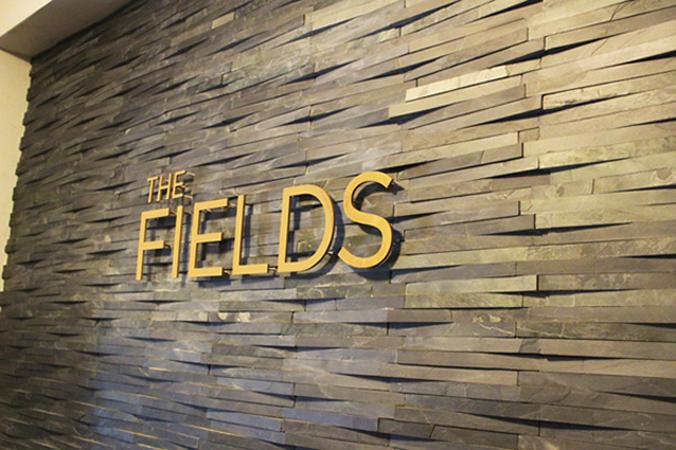 THE FIELDS.jpg