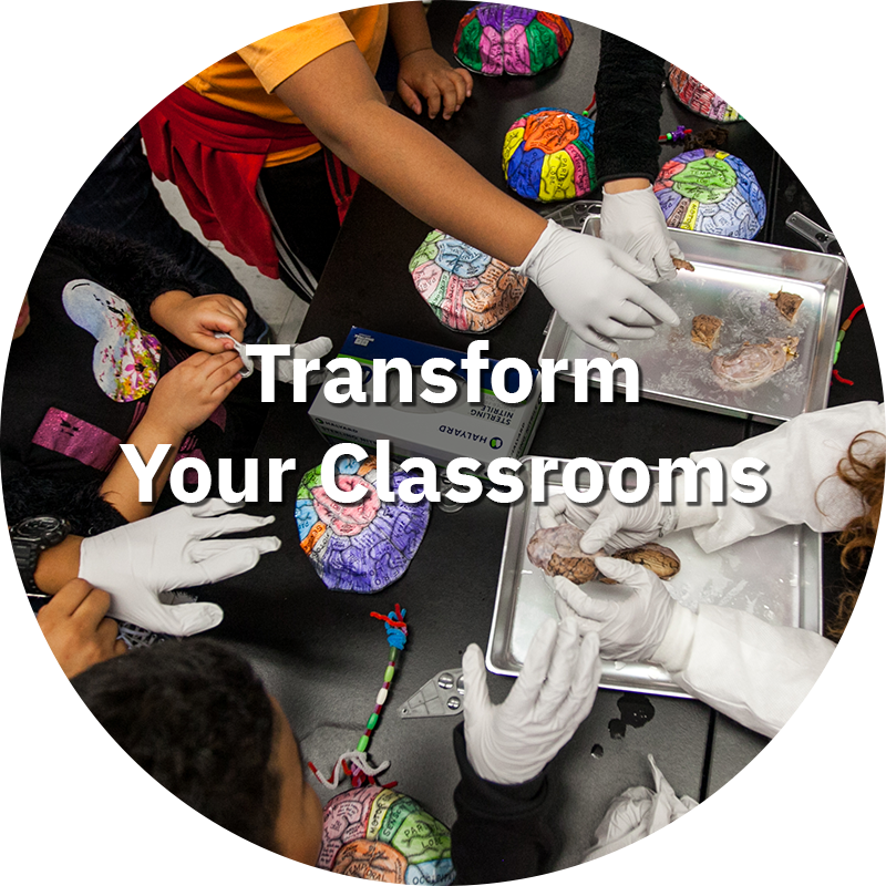 Transform Your Classrooms.png
