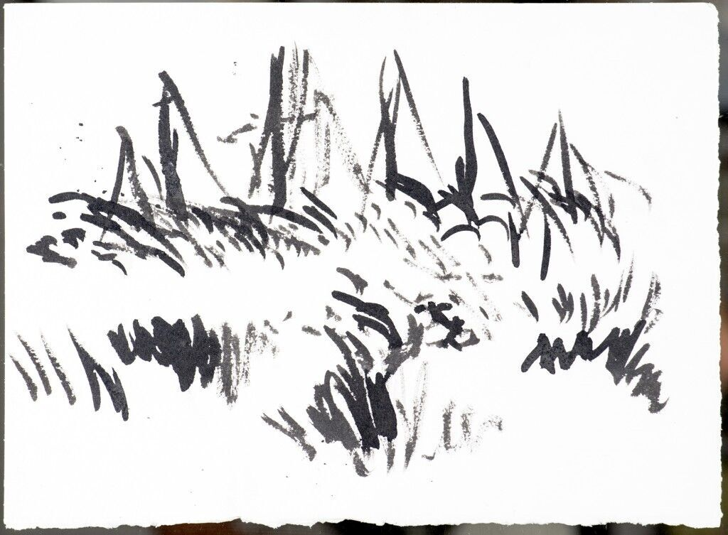 Masts Rye Harbour