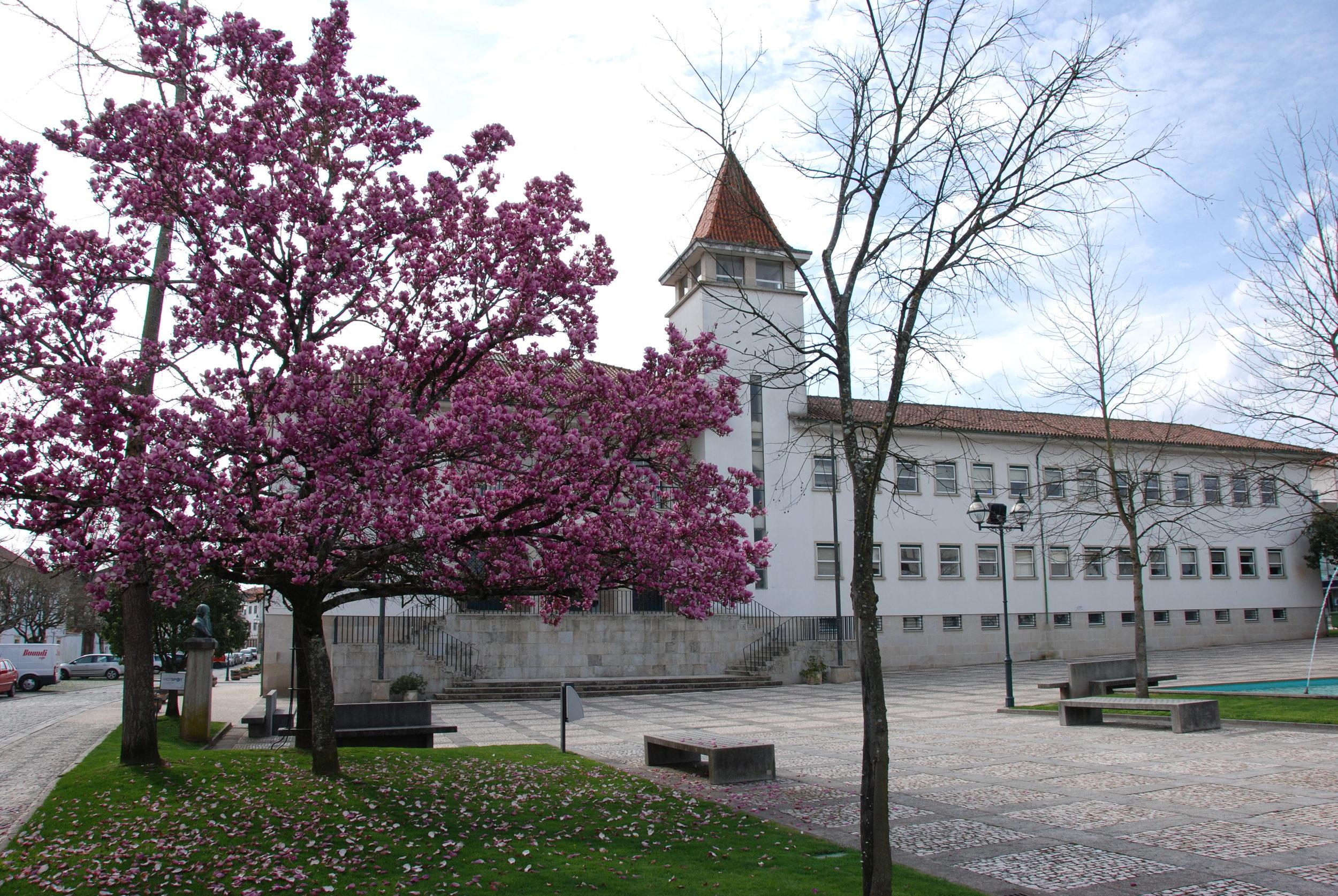 Câmara Municipal de Mortágua e Jardim Municipal