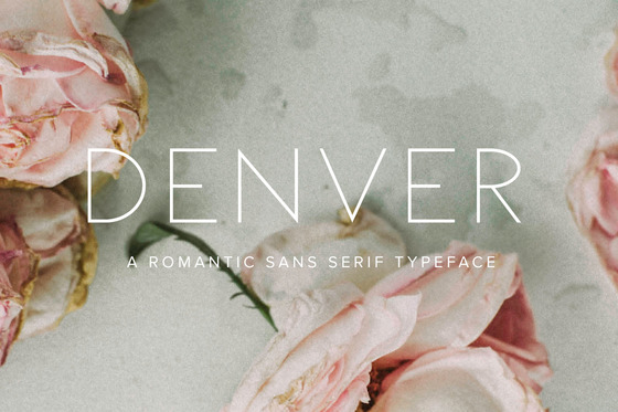 Denver+Font+New.jpeg