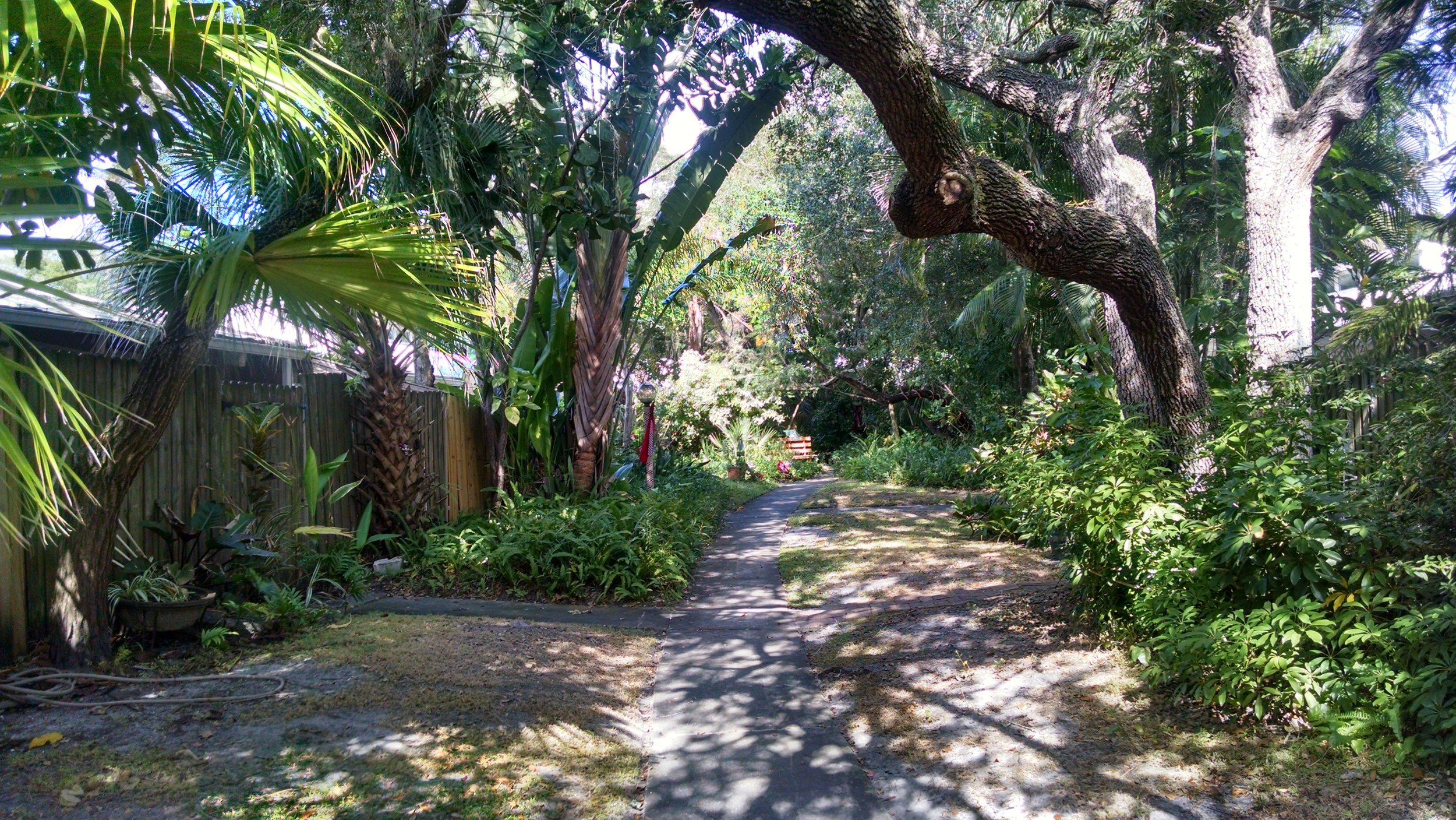 Sarasota outside home 1.jpg
