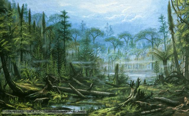 Carboniferous Landscape ©Science Photo Library  BBC