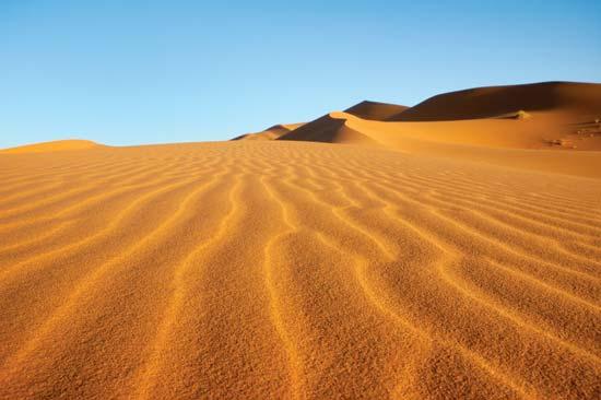 Sonora Desert ©Encyclopedia Britannica  Britannica.com