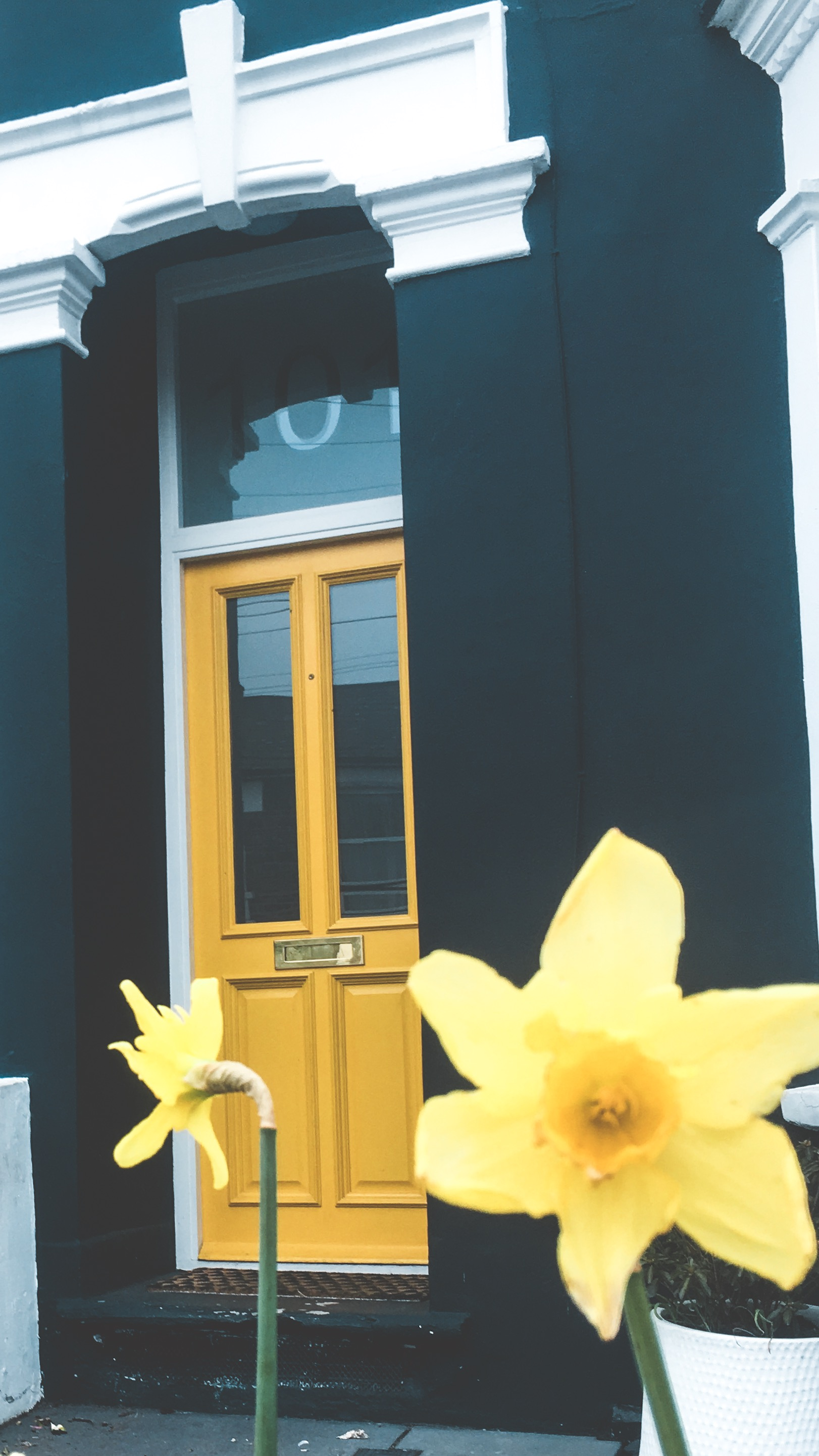 I think this color combo is so pretty: Dark gray and yellow.  This is a door on my street and I always think it's pretty when I walk past, haha.
